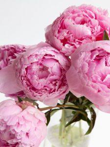 feng shui romance tips